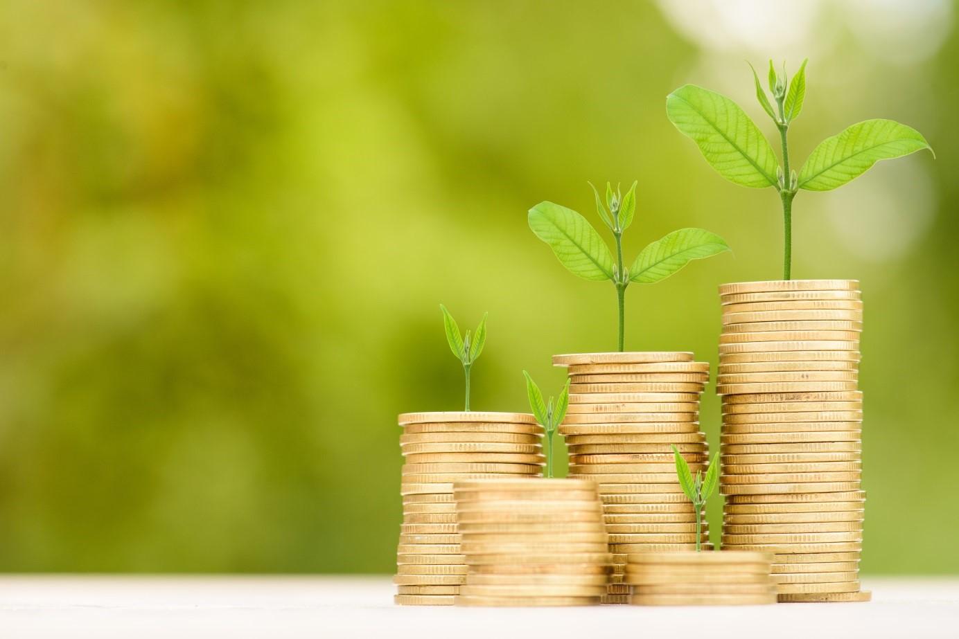 Chwilówka dla zadłużonych 2019 – nowe oferty, większy wybór